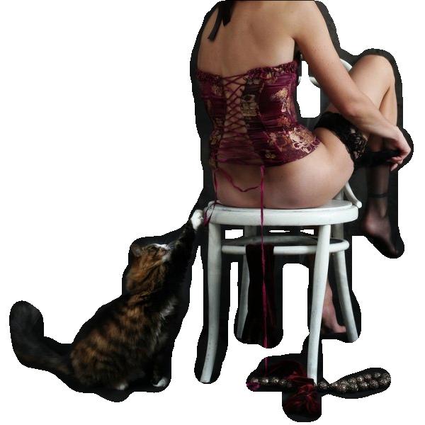tube femme chat