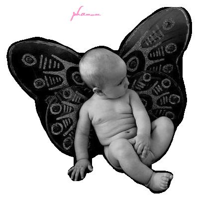 tube bebe papillon