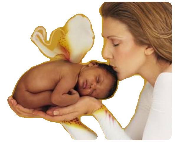 tube bebe celine