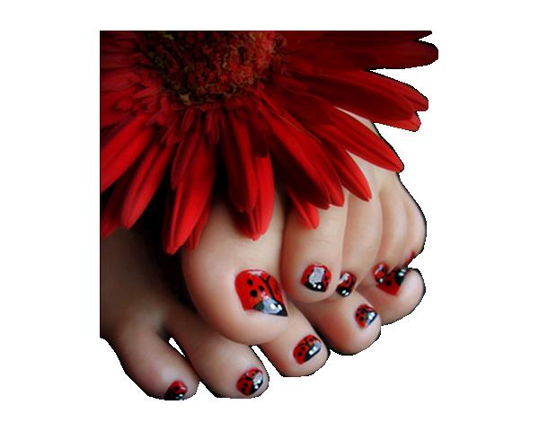 tube pied