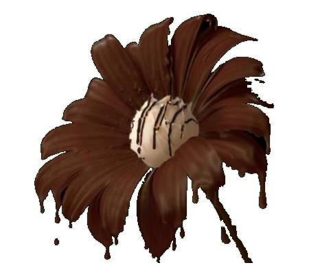 tube fleur chocolat